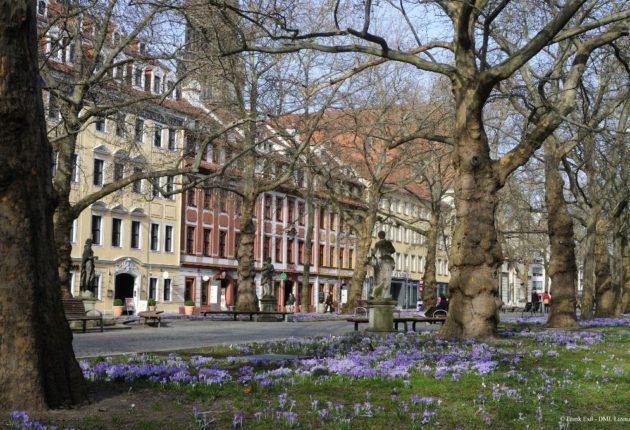 Hauptstraße Dresden - Äußere Neustadt