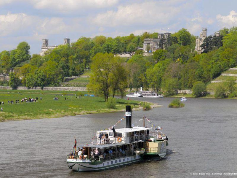 Schlösser Dampfschifffahrt Dresden © Frank Exß - Dampschifffahrt Dresden